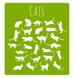 Cats In Various Poses vector