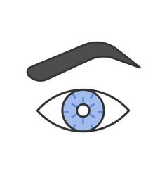 Eye eye brown and contact lens vector