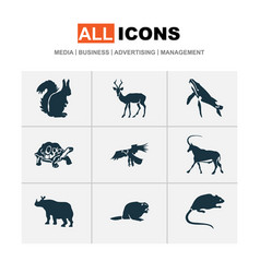 Fauna icons set with beaver turtle impala and vector