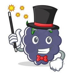 Magician blackberry character cartoon style vector