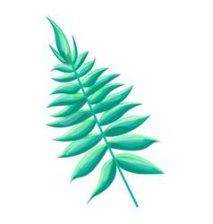 Royal fern tropical leaf vector