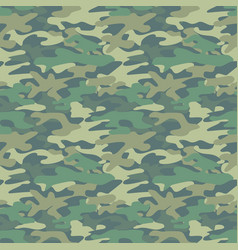 abstract military green pattern vector image