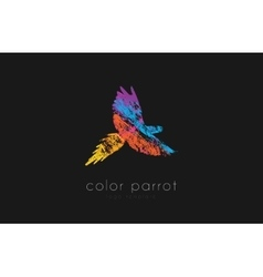 Parrot logo design Color parrot Bird logo vector image