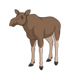 color image of elk moose isolated object vector image vector image