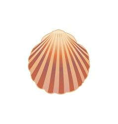 Seashell eps10 vector image vector image