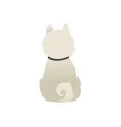 Cute sitting backwards white fluffy dog isolated vector