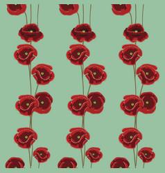 poppy flower vector image