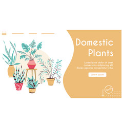 potting trees flowerpots hanging plants in pots vector image