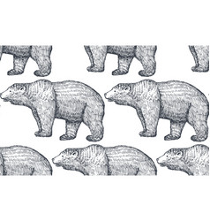 seamless pattern with hand drawn bears vector image