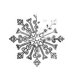 Snowflake winter snow vector