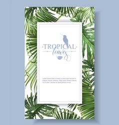Tropical leaves frame vector