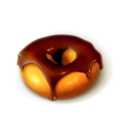 Ring donut in chocolate glaze vector image vector image