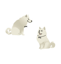 Set of sitting white fluffy dogs with different vector