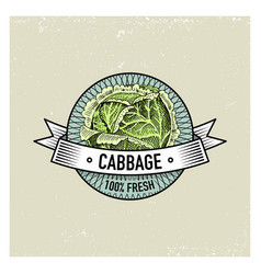 cabbage vintage set of labels emblems or logo for vector image vector image