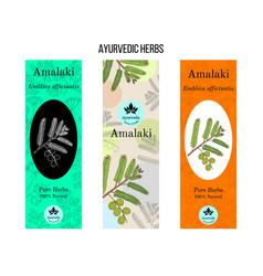 Ayurvedic herbs banners indian gooseberry amla vector