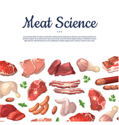 cartoon meat elements background vector image