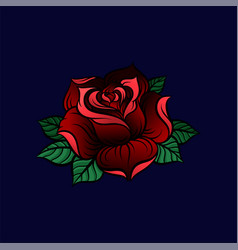 red rose on a dark blue vector image