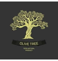 Hand-drawn graphic olive tree vector image