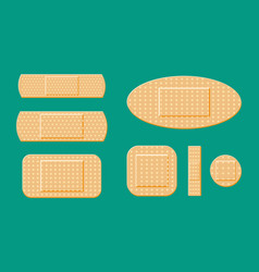 set of aid medical plaster in various sizes vector image