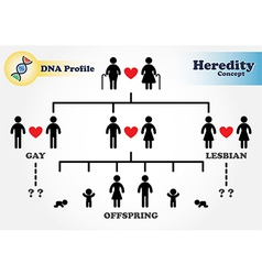 Hereditary diagram DNA profile vector image vector image