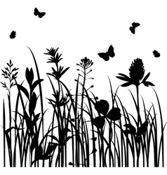 silhouettes of wild herbs and flowers vector image vector image