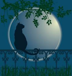 Cat full moon vector