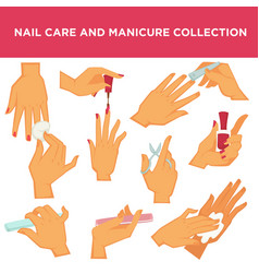 manicure nail design or had care collection vector image