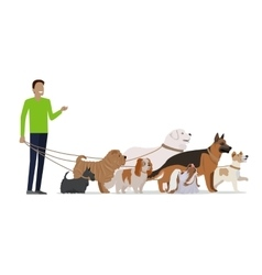 Professional Dog Walking Service Banner vector image