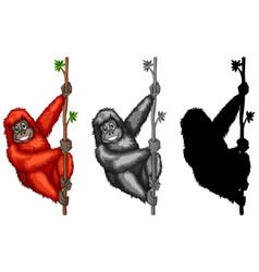set of orangutan character vector image