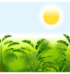 Tropical palm with sea on sunny background vector