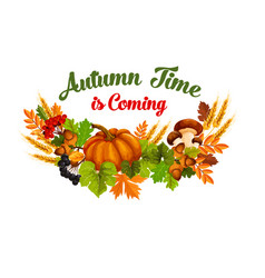 Autumn time poster of fall harvest vector