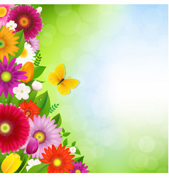 border flowers with butterfly vector image