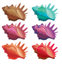 Collection of various colorful seashell vector
