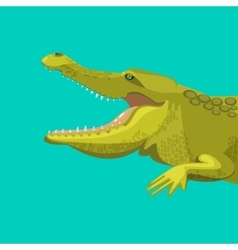 Dangerous green alligator is showing his teeth vector image