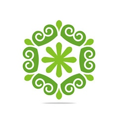 design natural ornament garden plants circle vector image