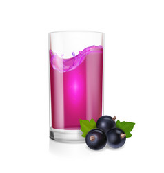 fesh black currant berry juice in drinking glass vector image