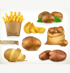 potato and fry chips vegetable 3d icon set vector image