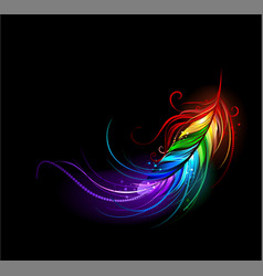 Rainbow feather vector