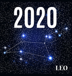 symbol leo zodiac sign with new year vector image