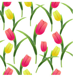 Tulips simless pattern card4-01 vector