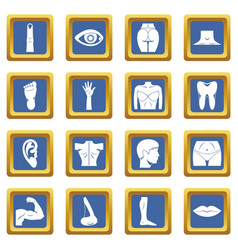 body parts icons set blue vector image