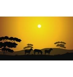 Beautiful zebra silhouette scenery vector image