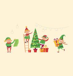 Elves preparing christmas pine evergreen tree vector