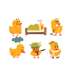 funny yellow humanized chicken cartoon characters vector image