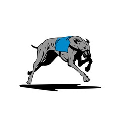 Greyhound Dog Racing Retro vector