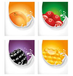 milk splash with apricot blackberry honey vector image