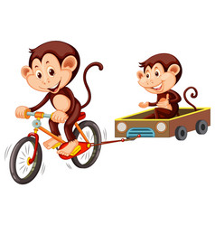 Monkey riding bicycle on white background vector