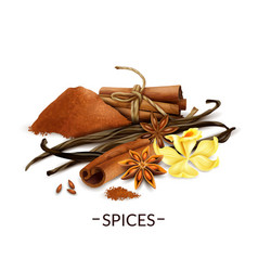 Realistic spices set vector