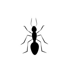 Simple black insect ant icon vector