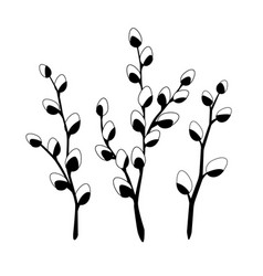 willow twigs in black isolated on white vector image